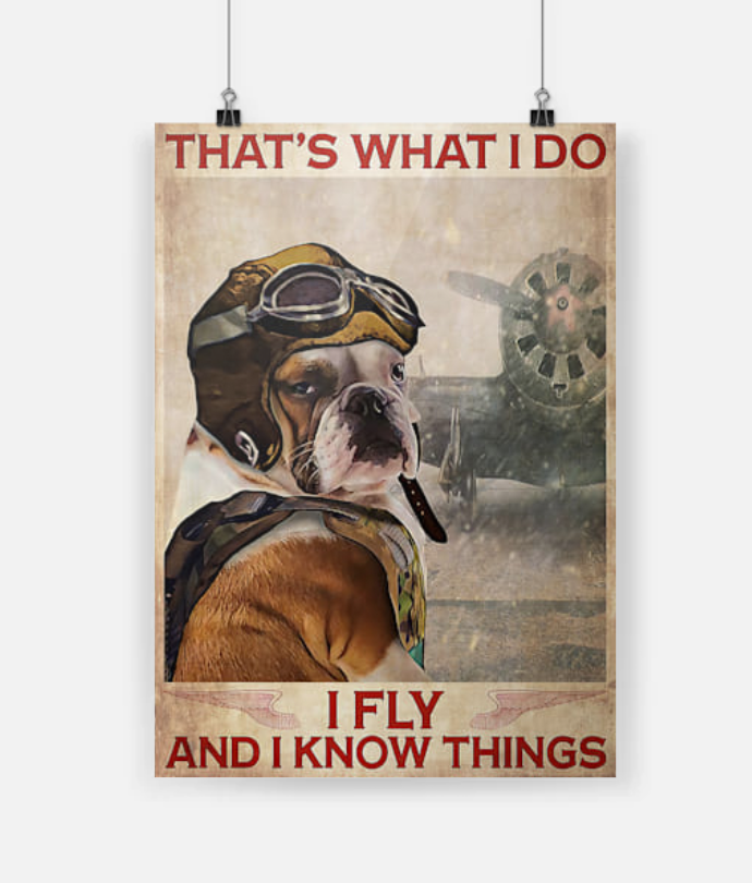 Bulldog Pilot That's What I Do I Fly And I Know Thing poster