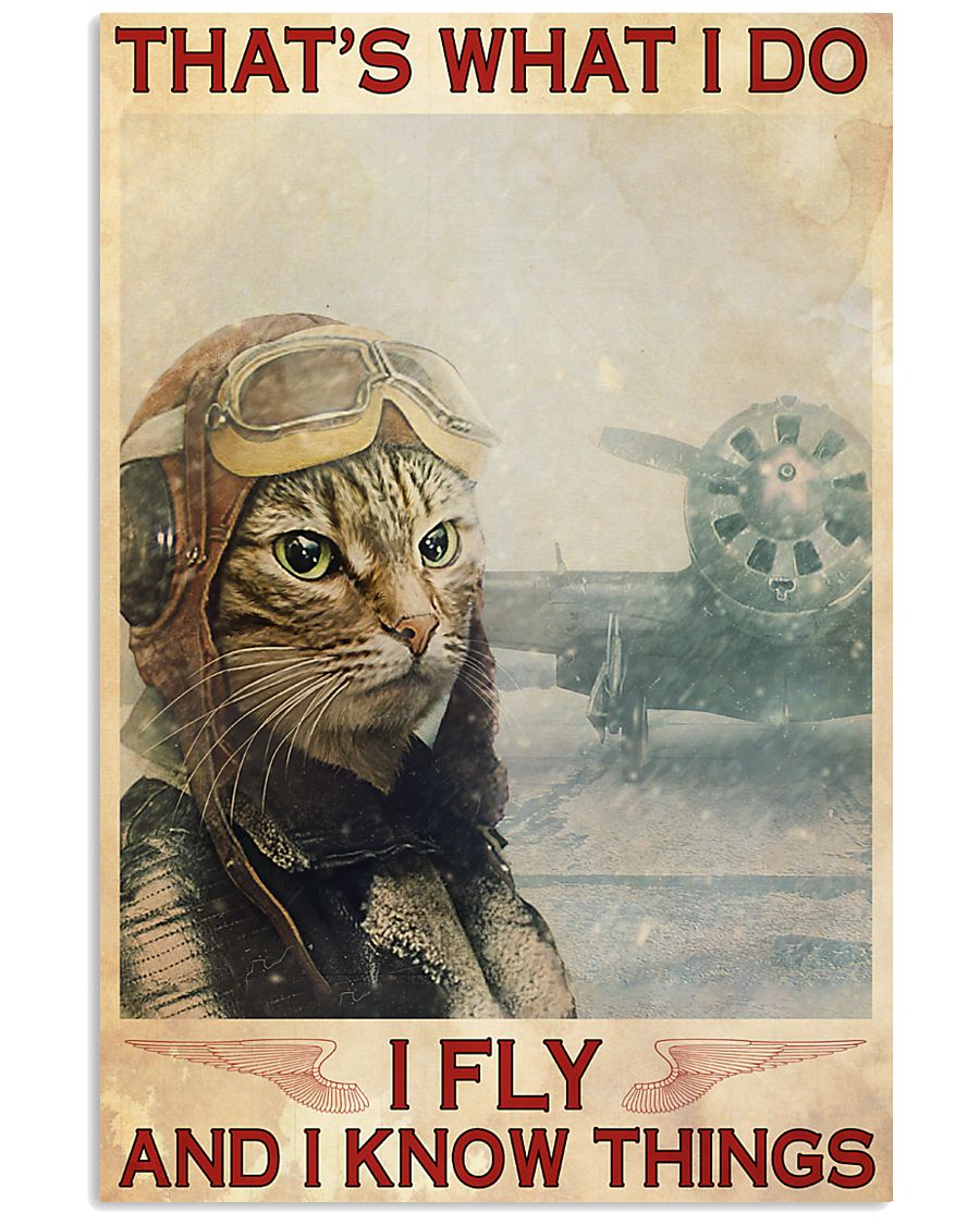 Cat Pilot that what i do i fly and i know things