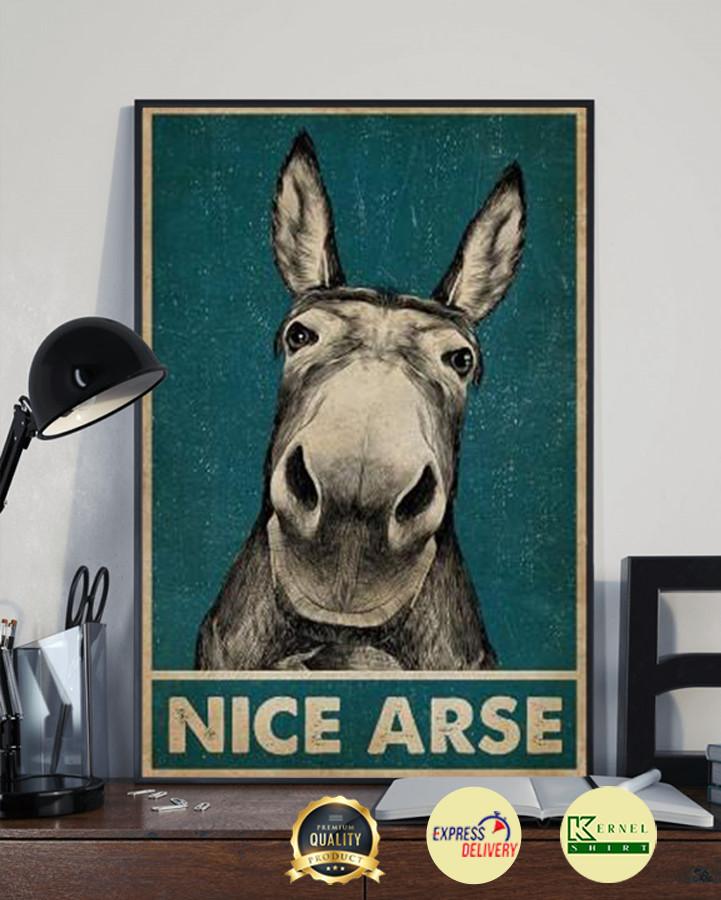 Donkey Nice Arse poster